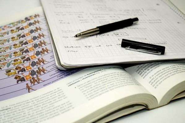 Wróci kształcenie zawodowe asystentek? Rząd pracuje nad zmianą przepisów