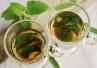 Domowe metody leczenia aft - rumianek, szałwia i jogurt naturalny