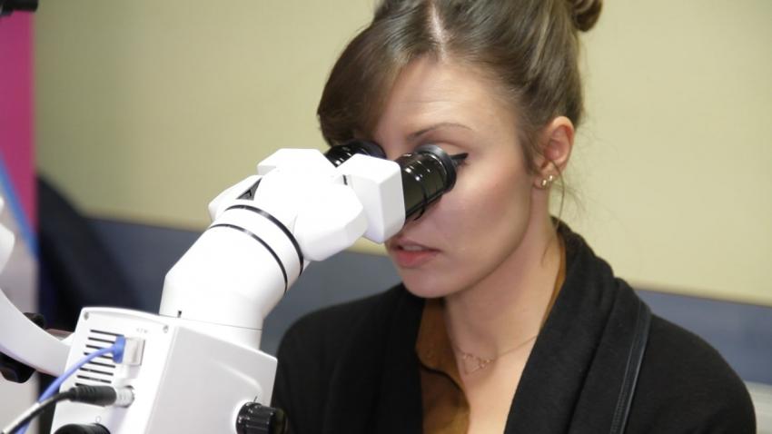 Jak zacząć pracę z mikroskopem? Wywiad z dr. n. med. Piotrem Wujcem