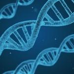 mutacje genetyczne - Dentonet.pl