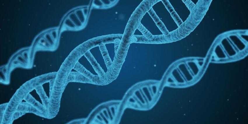 Mutacje genetyczne zwiększają ryzyko rozwoju próchnicy