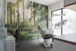 Praca dla stomatologa/endodonty Kwidzyn