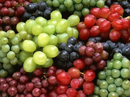 Winogrona dobre na dziąsła