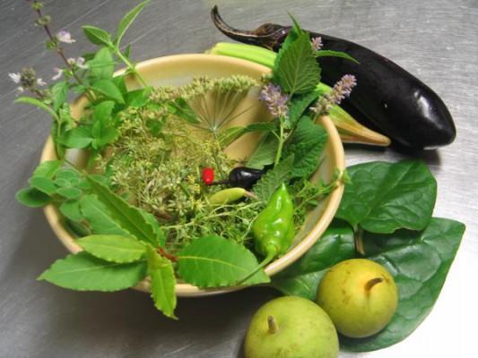 Roślinne preparaty są pomocne