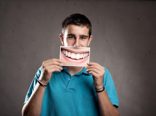 Jaką funkcję pełnią poszczególne zęby?