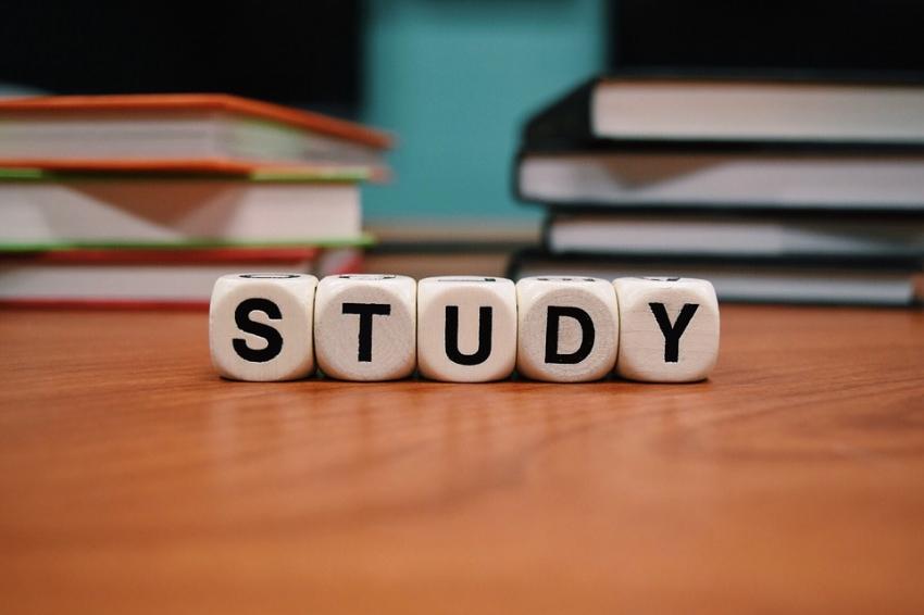 Uczelnie: sporo zajęć w nowym roku akademickim – zdalnie