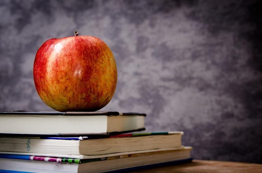 Propozycje studentów odnośnie reform szkolnictwa wyższego