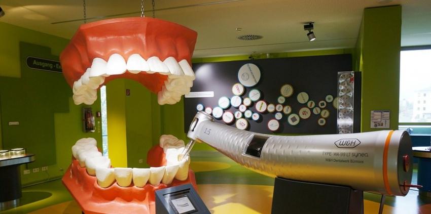 W Dniu Dentysty zwiedzamy stomatologiczny świat [video]