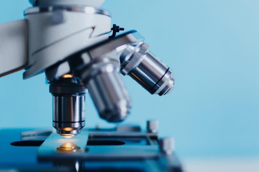 Zmodyfikowane ludzkie białko z zastosowaniem w stomatologii?
