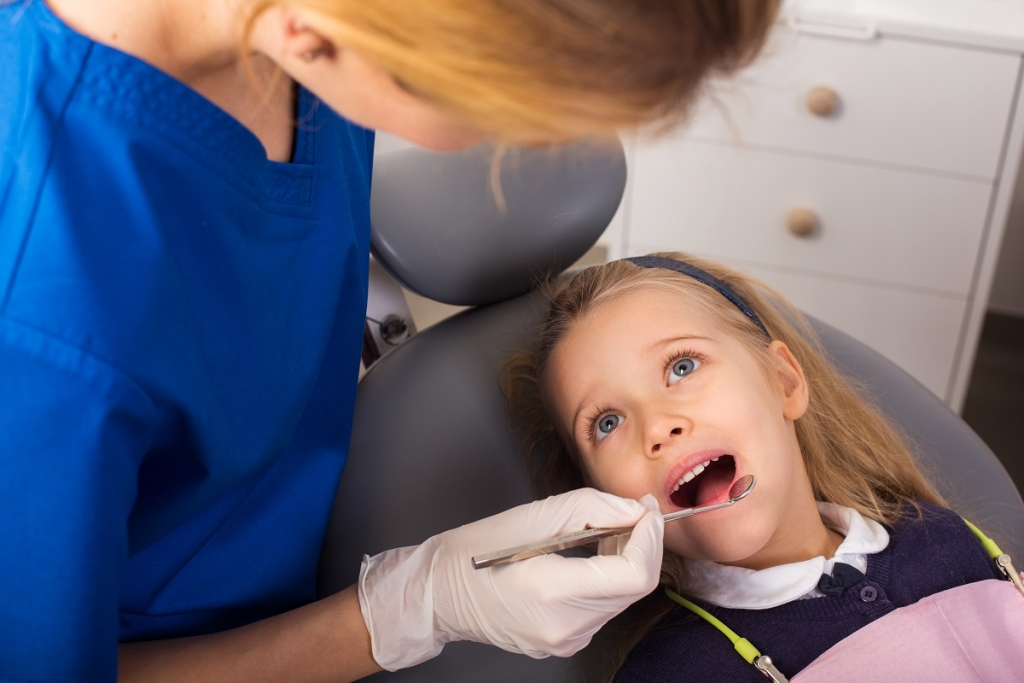 Septodont2 - Dentonet.pl