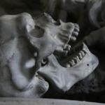 Homo antecessor - Dentonet.pl
