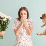 czy leczenie alergii jest bezpieczne w czasie pandemii - Dentonet.pl
