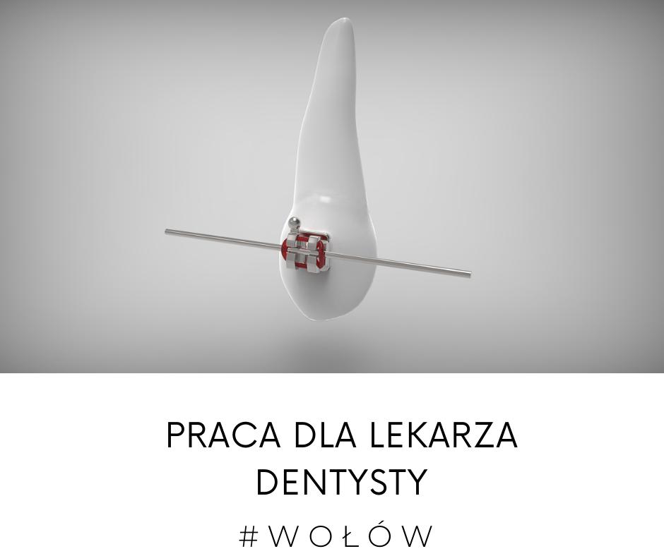 Wołów dentysta